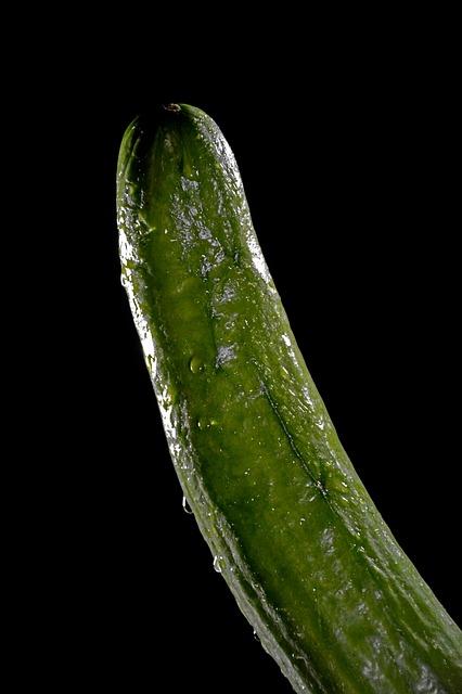 blut gefüllten pickel auf meinem schwanz